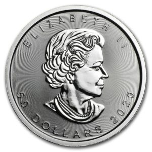 2020年メイプルリーフプラチナコイン表面
